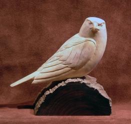 'Falcon' (carved moose antler) by Maureen Morris