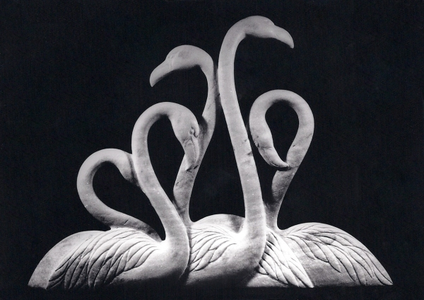 'Five Flamingos' (carved moose antler) by Maureen Morris