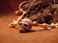 Skull necklace by Jack Brown